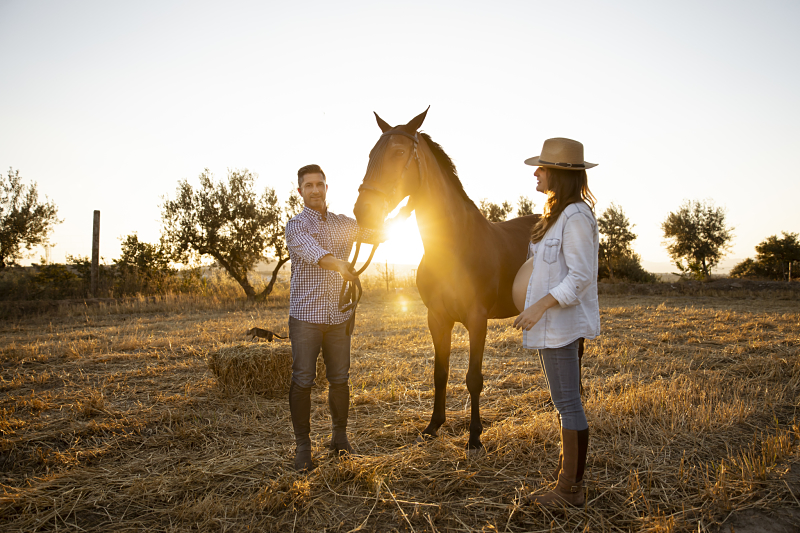 10 Sesión Embarazada Granada exteriores caballos_opt